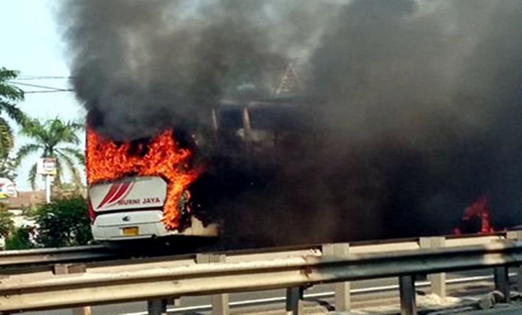 Bus Murni Jaya jurusan Merak - Purwakerto terbakar di Jalan Tol Merak -Tangerang KM 74.200 Istimewa/net