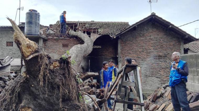 Rumahh warga Cilegon tertimpa pohon