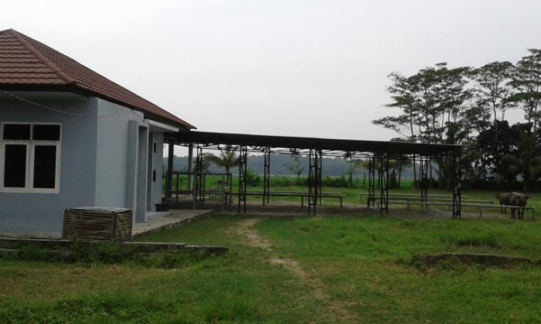 Kondisi pasar ternak yang berlokasi di area Rumah Pemotongan Hewan nampak sepi dan terbengkalai. (Foto:TitikNOL)