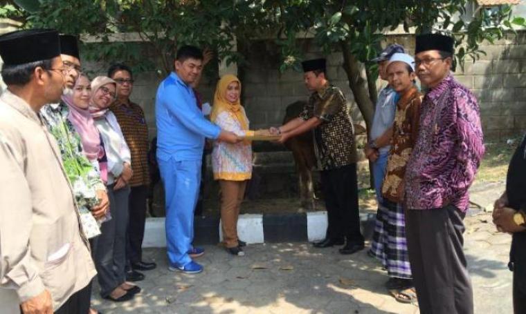 Prosesi penyerahan hewan kurban dari manajemen PT KRAKATAU POSCO dan PT KPSE-SI kepada Camat Citangkil, Joko Purwanto. (Foto: TitikNOL)