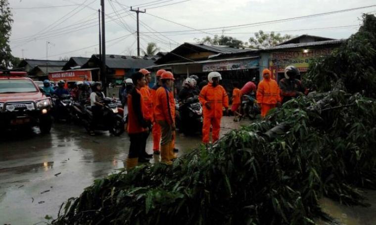 Petugas BPBD Kota Cilegon saat melakukan evakuasi pohon tumbang di jalan Ki Wasyid, Kelurahan Jombang Wetan, Kecamatan Jombang, Kota Cilegon. (Foto: TitikNOL)