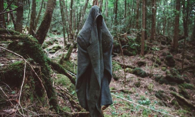 Hutan Aokigahara, Jepang. (Dok: dungeonpedia)