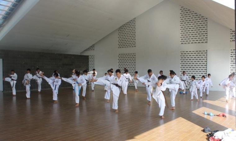Ilustrasi Karate-Do. (Dok: tobasamosirkab)
