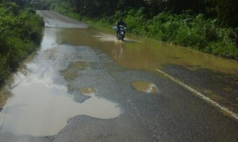 Kondisi ruas jalan nasional Rangkasbitung - Cigelung (titik ruas jalan wilayah Sajira - Cipanas) dipenuhi kubangan air dan rerumputan. (Foto: TitikNOL)