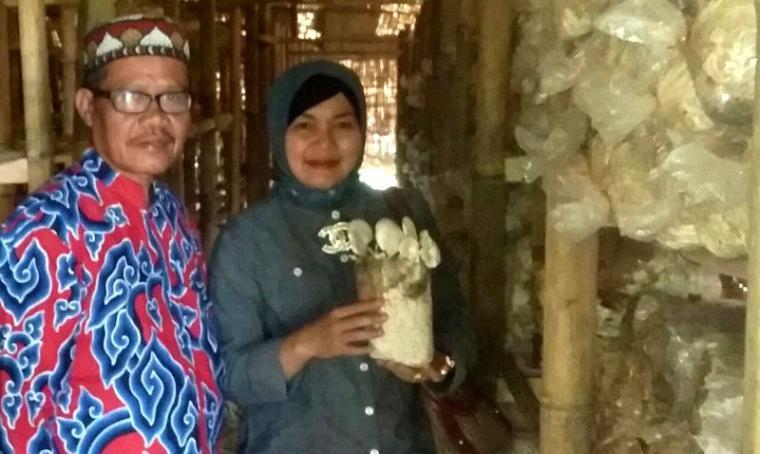 Bakal calon Wali Kota Serang Nuraeni saat berkunjung ke tempat budidaya jamur tiram milik Halimi yang berlokasi di Kampung Pagar Agung, Kecamatan Walantaka, Kota Serang. (Foto: TitikNOL)