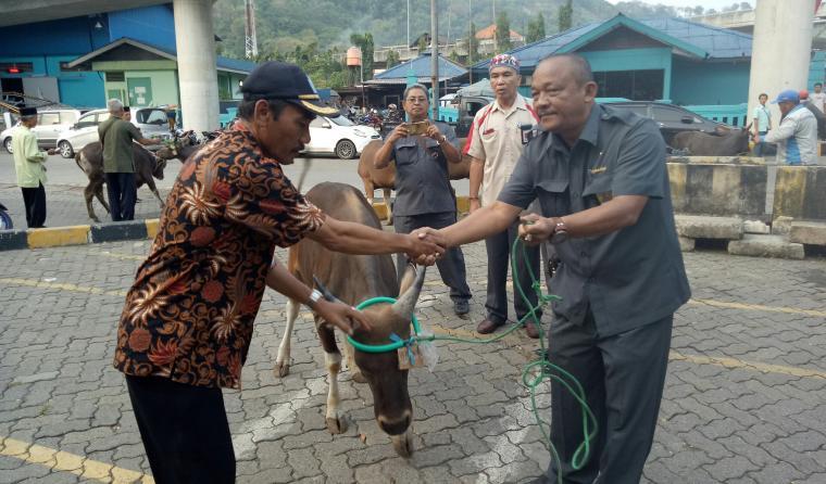 Ketua DPC Gapasdap Merak Togar Napitupulu, memberikan hewan kurban secara simbolis kepada perwakilan warga. (Foto: TitikNOL)