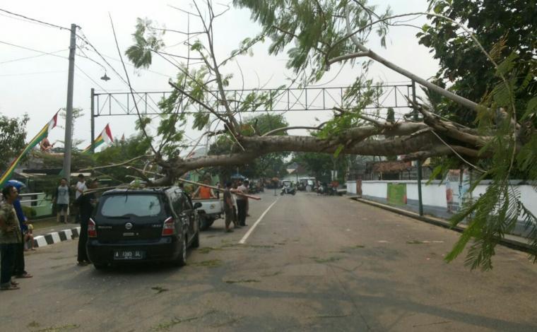 Mobil Nissan yang tertimpa pohon yang tumbang di depan Makodim Lebak. (Foto: TitikNOL)