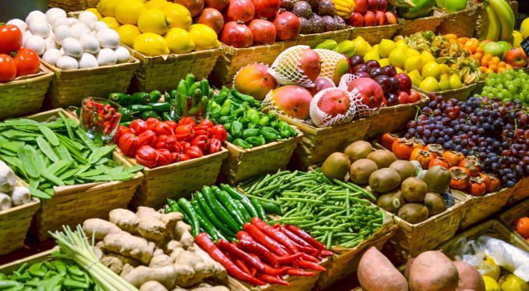 Ilustrasi buah dan sayuran. (Dok: techcrunch)