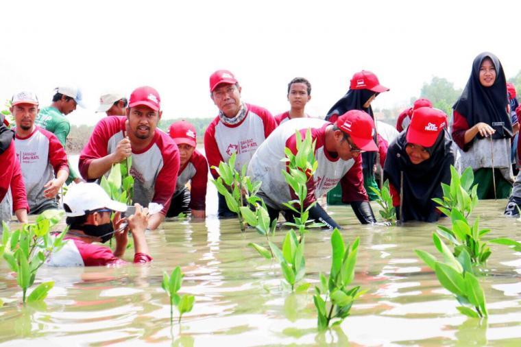 Suasana penanaman bibit tanaman mangrove. (Foto: Ist)
