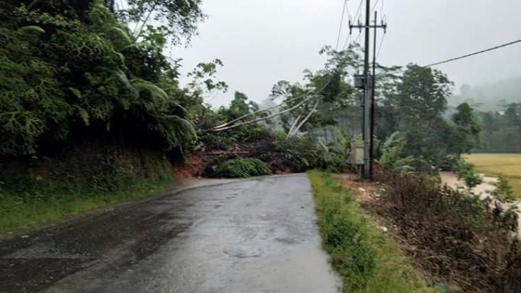 Ruas Jalan Provinsi Banten - Jabar (Warung Banten - Carucup) di Kecamatan Cibeber, Kabupaten Lebak longsor, akses jalan lumpuh total. (Foto: TitikNOL)