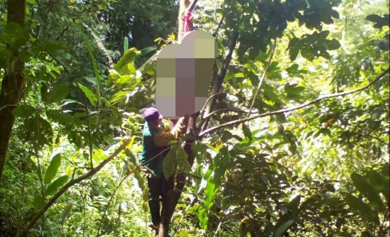 Seorang warga mengevakuasi jasad Sanjay yang tergantung di pohon. (Foto: TitikNOL)