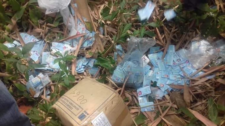 Ribuan Kartu Tanda Penduduk (KTP) ditemukan berceceran di kebun bambu di Kampung Banjarsari. Cikande, Kabupaten Serang, Provinsi Banten. (Foto: TitikNOL)