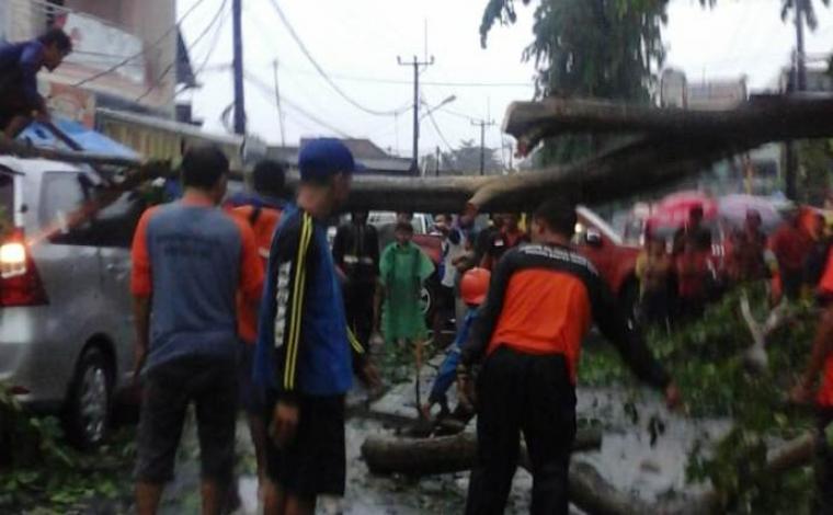 Satu unit mobil tertimpa pohon besar akibat hujan deras yang disertai angin kencang. (Foto: TitikNOL)