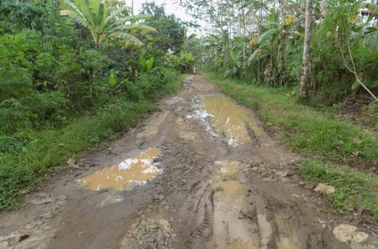 Jalan kabupaten penghubung tiga desa yakni desa Sukahujan - Ciparahu dan desa Cihara, Kecamatan Cihara, Kabupaten Lebak. (Foto: TitikNOL)