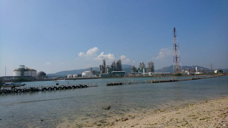 Lahan milik keluarga Maryadi yang lokasinya berbatasan dengan lahan untuk pembangunan pabrik PT Lotte Chemical Indonesia. (Foto: TitikNOL)
