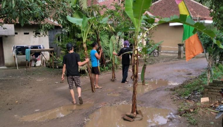 Protes jalan rusak, warga Kelurahan Rangkasbitung Barat, Kecamatan Rangkasbitung, dengan menanam pohon pisang. (Foto: TitikNOL)