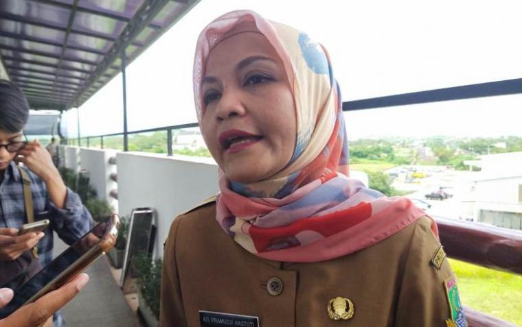 Kepala Dinkes Provinsi Banten, Ati Pramudji Astuti saat memberikan keterangan kepada awak media. (Foto: TitikNOL)