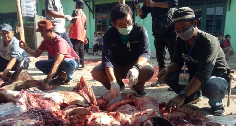 Pemotongan hewan qurban yang berlokasi di samping halaman Masjid Al-Ikhwan. (Foto: TitikNOL)