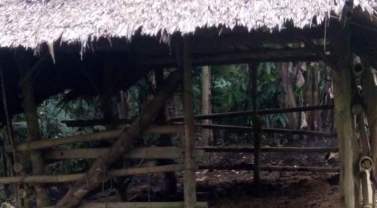 Kandang kerbau kosong melompong setelah kerbau dicuri. (Foto: TitikNOL)