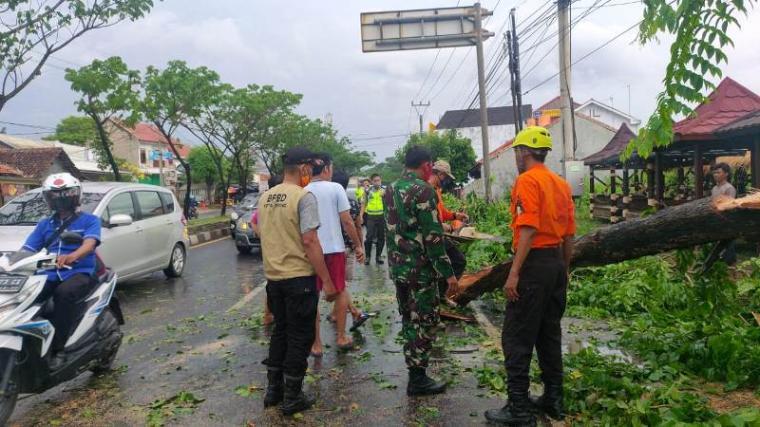 Petugas BPBD, Perkim dan Polisi Lalu Lintas Polres Serang Kota saat bersihkan pohon tumbang. (Foto: TitikNOL)
