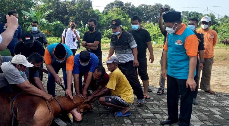 Wali Kota Cilegon Helldy Agustisn saat menyembelih hewan kurban di halaman Masjid Nurul Iman Pemkot Cilegon. (Foto: TitikNOL)
